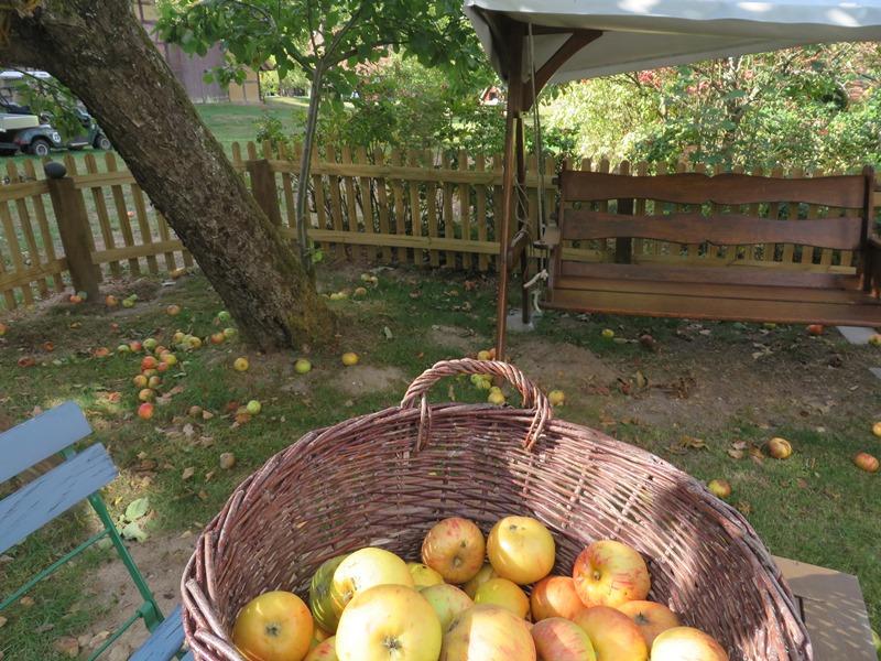Sind bei mir kostenloses fallobst gewesen aus den gepfl ckten mache ich frischen saft t glich - Apfelmus einkochen im backofen ...